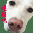 台灣米克斯麻糬