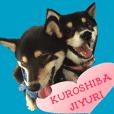 KUROSHIBA JIYURI photo 2