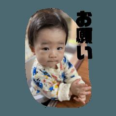 ichi_20201122171257