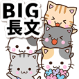 Lots of Cute cats (BIG)