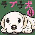 Wanko-biyori puppy Labrador retriever 4