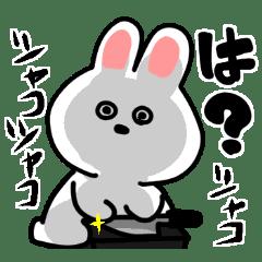 ニューウサギ5