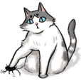 Bopo cat daily