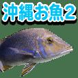 Okinawa's saltwater fish 2
