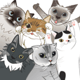 6 cats meow