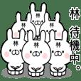 Hayashi's rabbit sticker