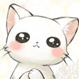 fluff cute cat 2