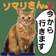 Cat Sticker Somari2