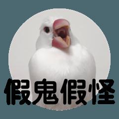 杏仁是隻鳥2