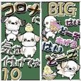 【Big】新シーズー犬10『いつもの言葉』