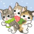 冬のもこもこ猫ちゃんズ