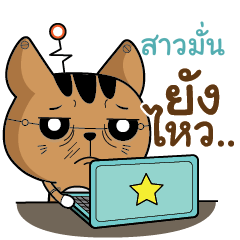 SAOMUN The Salary Robot cat