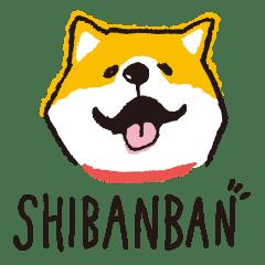 SHIBANBAN