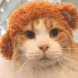猫カフェロンロンスタンプ