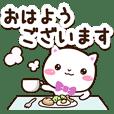 Very cute white cat (Gentle words)