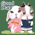 Rabbit MOYASHI and BOK CHOY -in summer