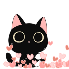 Atamnya Kuro Cat