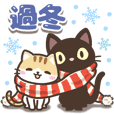 black cat and calico cat [end of year]tw