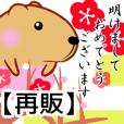 きゃぴばら【年末年始再販】