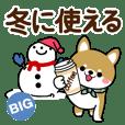 冬〜新春♡豆柴・柴犬【BIG】