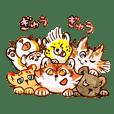 Wild Cat Kindergarten