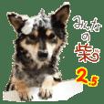みんなの柴犬スタンプ2.5