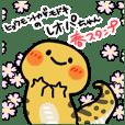 ヒョウモントカゲモドキのレオパちゃん/春