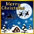 Merry Christmas ! HAPPY NEW YEAR !