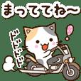 お茶目な三毛猫【感情編】