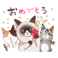 cute and funny cats.