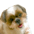Shih Tzu dog sticker love dogs