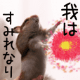(Fourth edition)Hamster I am Sumire