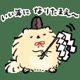 pomeranian Popochi New Year's holiday