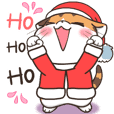 Soidow Christmas Day&Happy New year