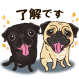A sticker willingly. Pug Friend