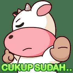 Momo Cow : Fun Pack 3
