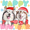 Husky Happy New Year 2021 (BigTic)