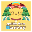 Devil's Bride - guide dog Harvey