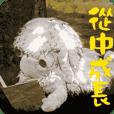 小羊桑尼-祝福貼圖