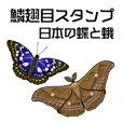 Butterflies sticker