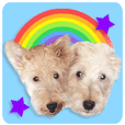 Terrier brothers everyday use sticker
