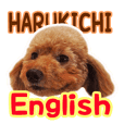 harukichi sticker for English