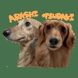tsubaki&arashi