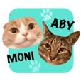 ABBEY & MONICA 's CAT Stickers