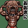Muscle macho animal Kansai dialect