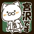 MIYAZAWA-cat