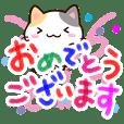 Small Cute Calico cat 5