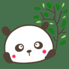 ほのぼの系毒舌パンダ2