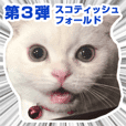 Sticker of Pathetic face Scottish Fold 3