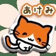 【あけみ・アケミ用】お名前ぷくぷくシール